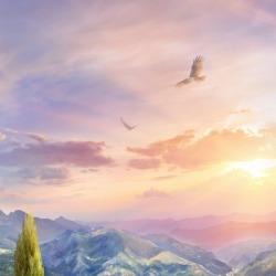 Обои Affresco Пейзаж, арт. 6914