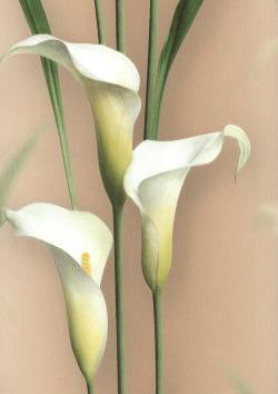 Обои Andrea Rossi Gorgona, арт. 54139-6