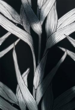 Обои Architects Paper Chroma, арт. 1331-20