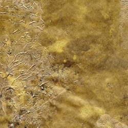 Обои Arlin Gondwana, арт. 1