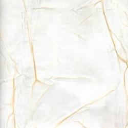 Обои Arlin Gondwana, арт. 61 нет