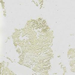 Обои Arlin Lava, арт. GB1