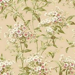 Обои Ashford House Flowers S.E., арт. CF6308