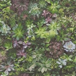 Обои AURA Evergreen, арт. 7322