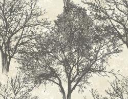 Обои Carl Robinson Carl Robinson 12, арт. cr41200