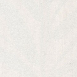 Обои Casamance Chromatic, арт. C880155