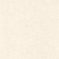 Обои Caselio BETON, арт. 101480010