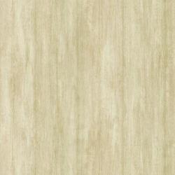 Обои Chesapeake Sand Dollar, арт. DLR54612