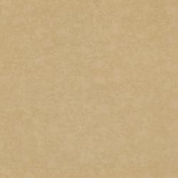 Обои Chivasso Ghost, арт. CA8211-040