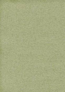 Обои Chivasso Silky Plain, арт. CA8178-032