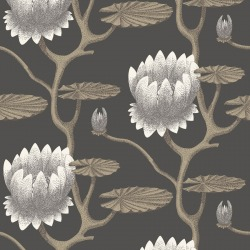 Обои Cole & Son The Contemporary Collection, арт. 95/4026