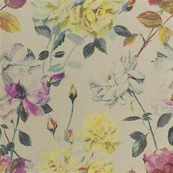 Обои Designers Guild Jardin Des Plantes, арт. PDG711-02