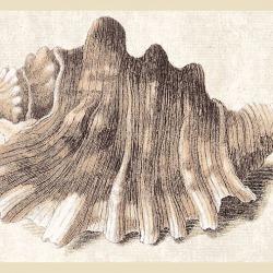 Обои Eijffinger Atlantic, арт. 343045