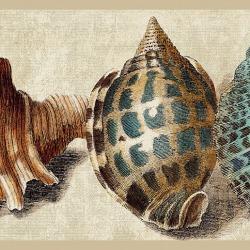 Обои Eijffinger Atlantic, арт. 343046