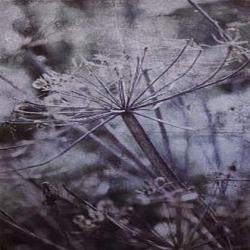 Обои Eijffinger Lino, арт. 379106