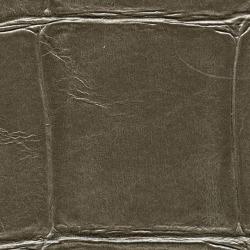Обои Elitis Anguille Big Croco Legend, арт. VP42312