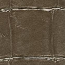 Обои Elitis Anguille, арт. vp-423-12