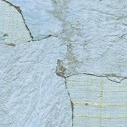 Обои Elitis Oceania, арт. rm-671-02