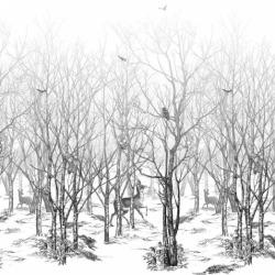 Обои Isidore Leroy Naturels, арт. 6241604