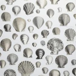 Обои John Derian Picture Book, арт. PJD6000-03