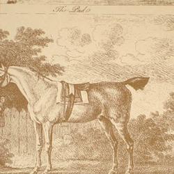 Обои Lewis&Wood Classic Wallpaper, арт. lw9593