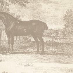 Обои Lewis&Wood Classic Wallpaper, арт. lw9595