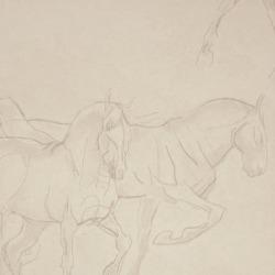 Обои Lewis&Wood Classic Wallpaper, арт. lw74109
