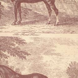 Обои Lewis&Wood Classic Wallpaper, арт. lw95177