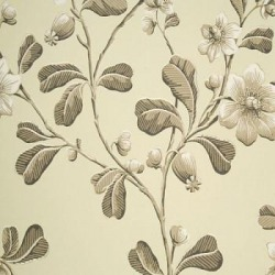 Обои Little Greene London Wallpapers, арт. 0277BRAPPLE