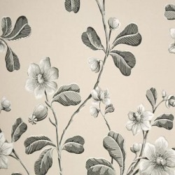 Обои Little Greene London Wallpapers, арт. 0277BRMONOZ