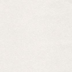 Обои Loymina ROSES, арт. R5001