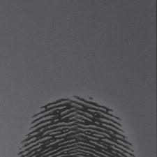Обои Marburg Identity, арт. 52452