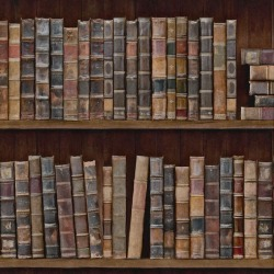 Обои MINDTHEGAP MINDTHEGAP, арт. WP20112 - Bookshelf - Roll A
