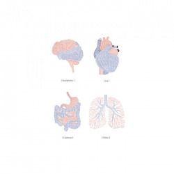 Обои Mr Perswall Communication, арт. P132601-W