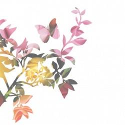 Обои Mr Perswall Creativity & Photo Art, арт. P010501-W