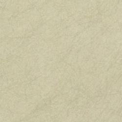 Обои Osborn&Little TEATRO, арт. cw5410-28
