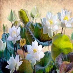 Обои PINEGIN Цветы, арт. 02020221