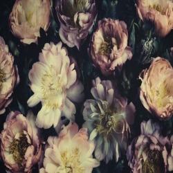 Обои PINEGIN Цветы, арт. 9393937