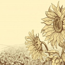 Обои PINEGIN Цветы, арт. 27272710