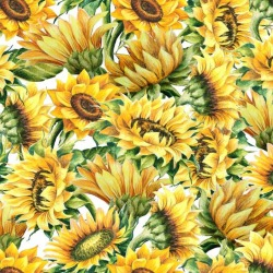 Обои PINEGIN Цветы, арт. 27272729