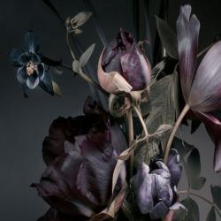 Обои PINEGIN Цветы, арт. 78787811