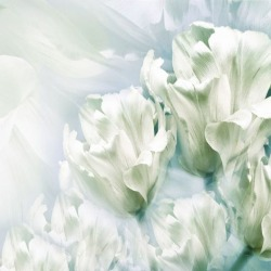 Обои PINEGIN Цветы, арт. 78787820