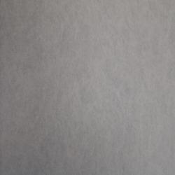 Обои Rasch Textil  Trend Legere, арт. 216263