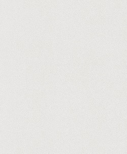 Обои Rasch Wallton, арт. 144000