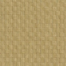 Обои Ronald Redding Designer Resource Grasscloth, арт. WN2573