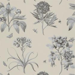 Обои Sanderson Classic Collection Wallpaper II, арт. DCLAEC106