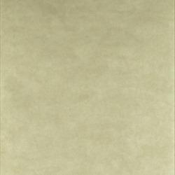 Обои Sanderson Parchment Flowers, арт. DPFWPP105