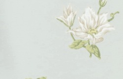 Обои Sanderson Pemberley Collection, арт. DPEMCL102