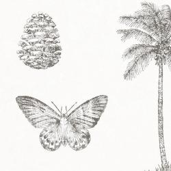 Обои Sanderson Voyage of Discovery, арт. 213384