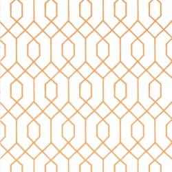 Обои Thibaut Graphic Resource, арт. T35200